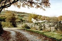 prints autumn lane dartmoor david william young paintings