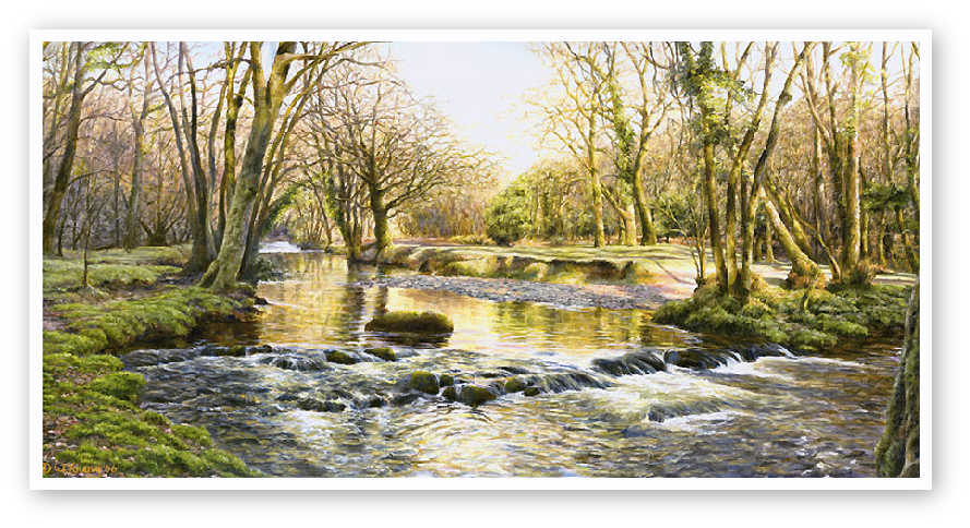The River Walkham near Double Waters, Devon print enlargement