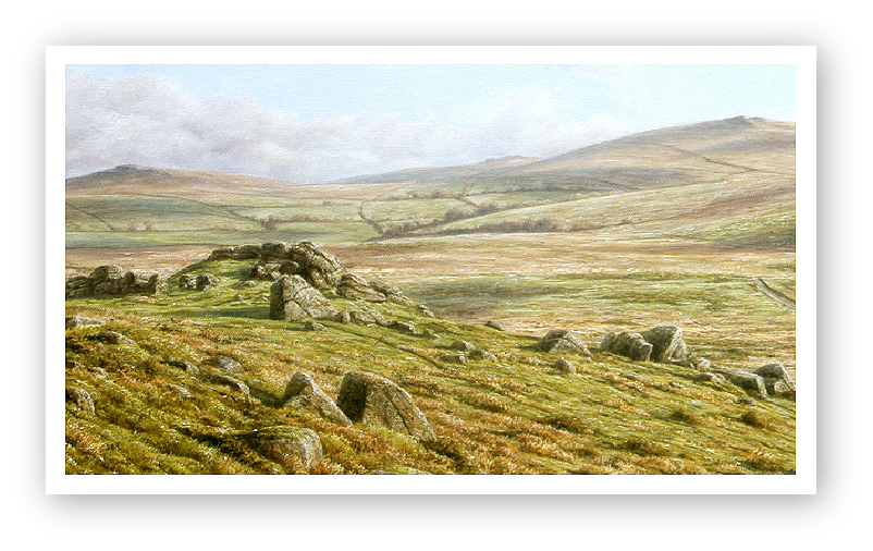 Ten Tors, Dartmoor detail