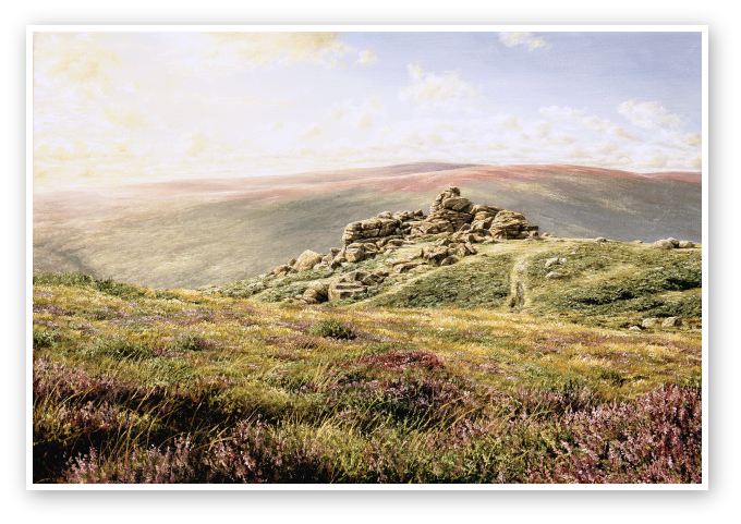 Augsust Heathers, Bonehill Rocks, Dartmoor print enlargement