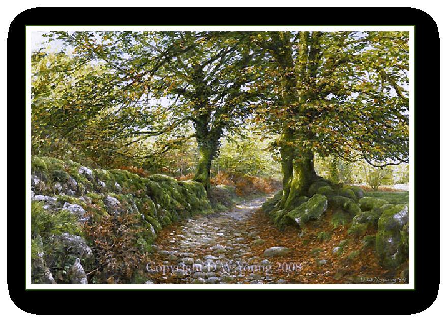 Norsworthy Lane, Burrator, Dartmoor
