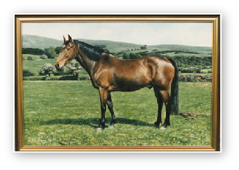 Horse Portrait, Will Farm, Horndon, Dartmoor oil painting by David William Young