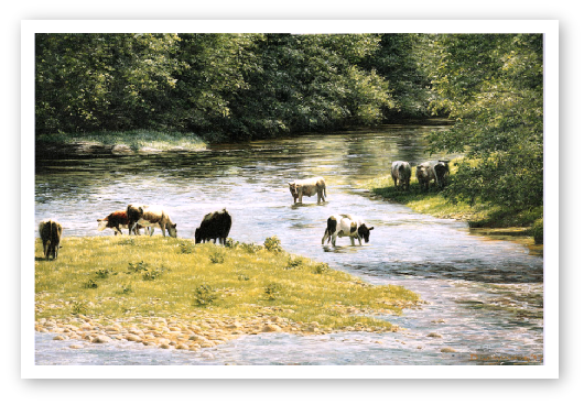 Lond Summer Days, River Tamar painting